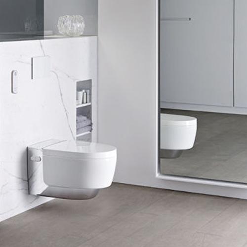 Ein modernes Dusch-WC passt in jedes Bad.